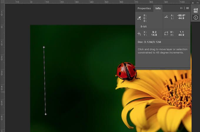 How to Measure Distance in Adobe Photoshop